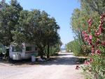 Missiria/Rethymnon Camping  Crete Campings